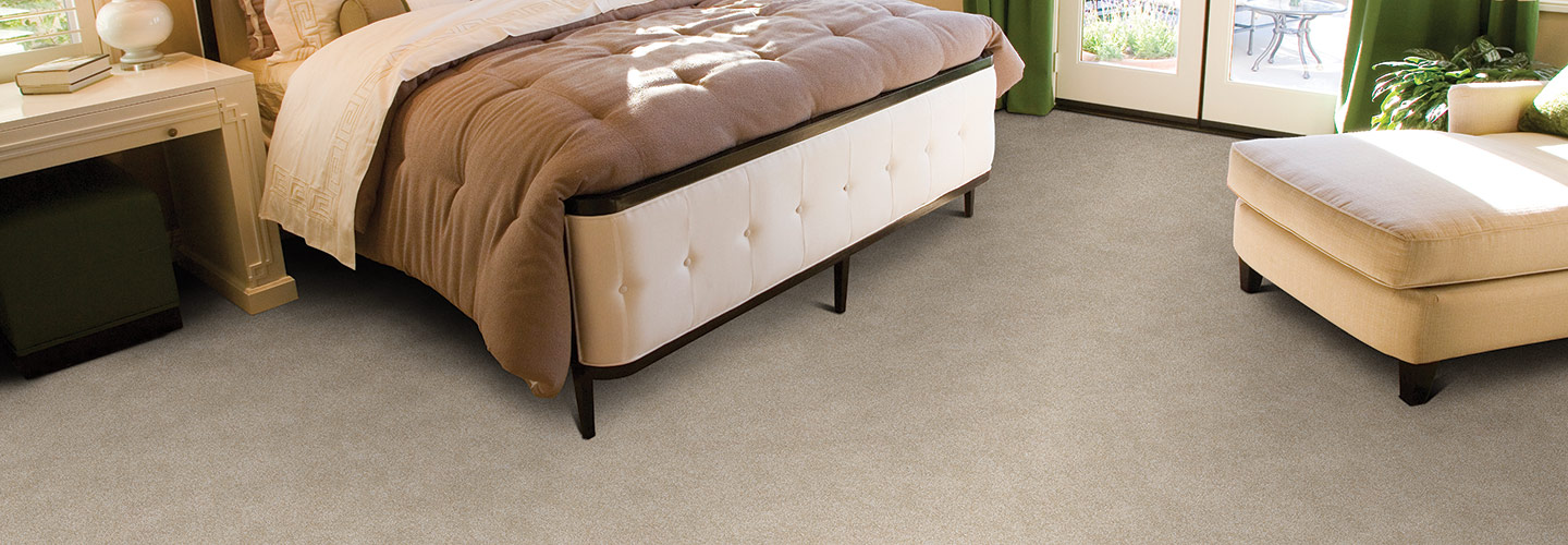 premier stainmaster pet protect morning glory - Stainmaster Carpet